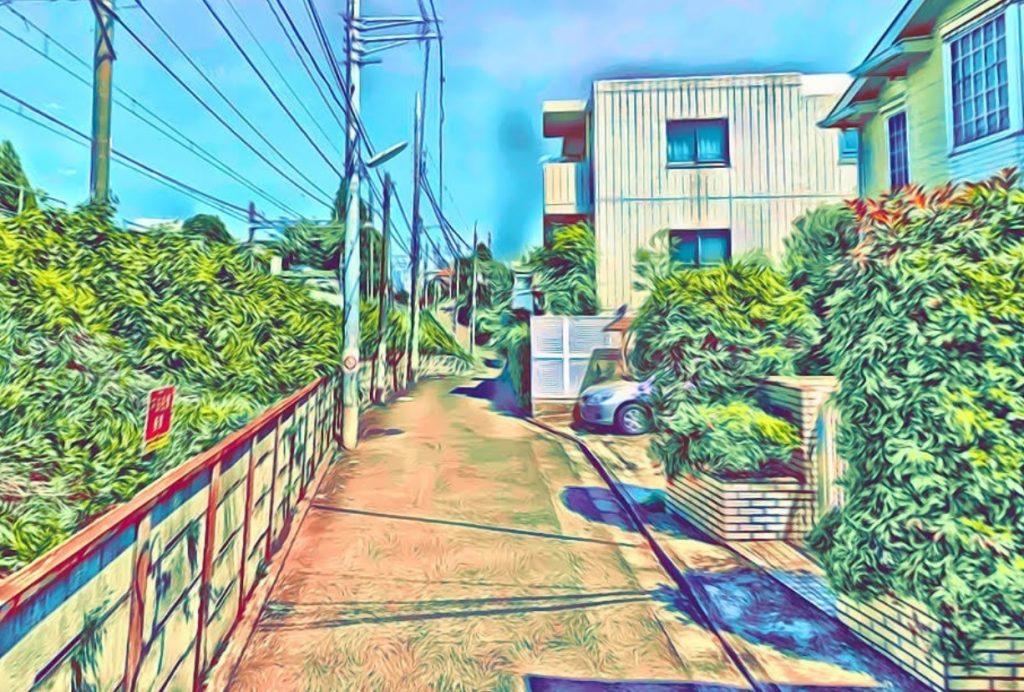 池ノ上駅前野線路沿い道路