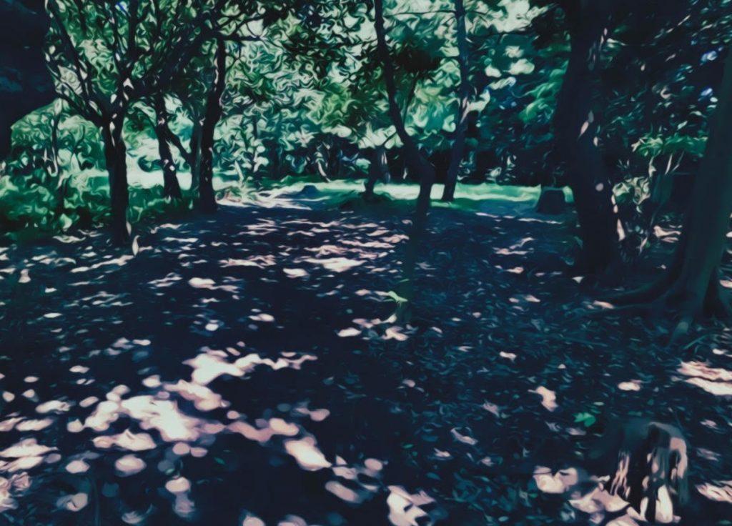 龍野ヶ岡自然の森